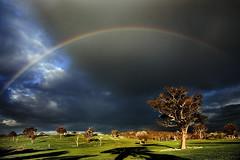 rainbow sky (bazpics) Tags: trees grass rainbow stormysky anawesomeshot wowiekazowie