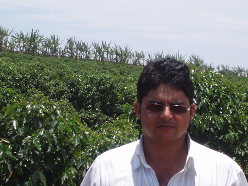 Clezio in Coffee Field
