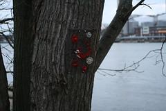 graffiti (Lisa Kristin) Tags: sten rda majorna