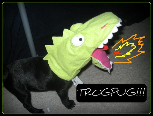 TROGPUG!