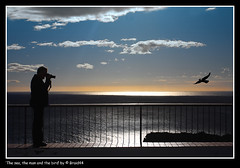 The sea, the man and the bird ( Pere Soler) Tags: blue sea sky sun man bird clouds sunrise bravo photographer searchthebest themoulinrouge firstquality canon1740lf4 okp allrightsreserved 40d abigfave canon40d braid44 ryc4x2 peresoler
