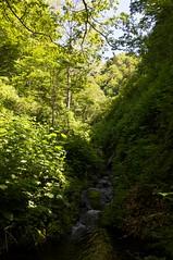 小川の流れて来る先に岩山が