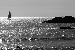 longing for the Summer (Wackelaugen) Tags: ship water sea sparkling rocks swimmer silhouettes boat sailboat canon eos photo photography wackelaugen black white bw blackwhite blackandwhite mono noiretblanc summer