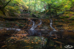 Like a Dream (xrhstos.bas23) Tags: greece drama rhodope livaditis water waterfalls reflection autumn leaves longexposure landscape nature trees forest river lake macedoniagreece makedonia timeless macedonian μακεδονια