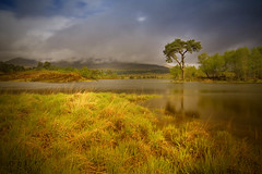 Queen Elizabeth II (BoboftheGlen) Tags: bridge cloud black tree feet wet rain river saturated boots random argyll mount depression loch orchy soaking leaky fedup hailstones breeches torrential tulla the4elements troosers