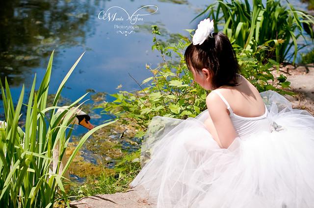PhSho Park Dahlia 115 blog