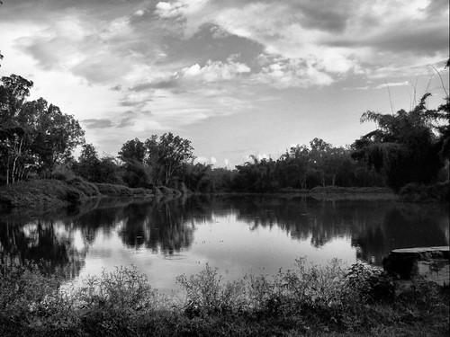 Pond @ Bandipur