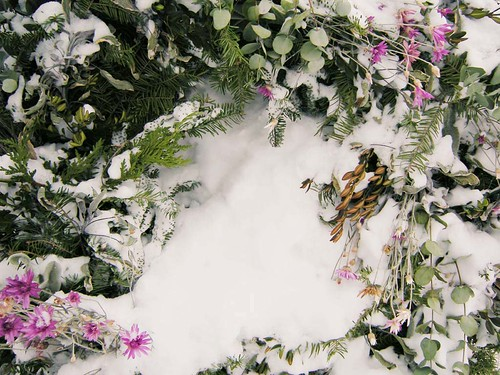 Festive Floral Wreath Embedded in Snowy White Softness