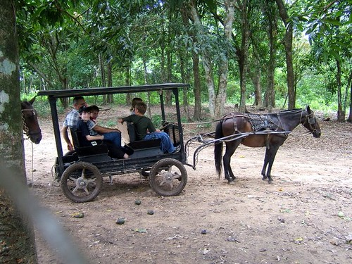 Missionary kids taking a ride at the zoo behind the resort.