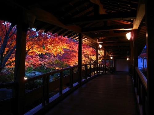 紅葉を見ながら廊下を歩く