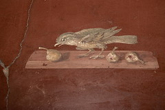 190 Italy 19 01 08 (RoCam) Tags: summer italy bird art tourism archaeology monument birds animals museum buildings painting volcano ancient ruins campania roman ruin exhibition exhibitions villa naples volcanoes monuments museums eruptions archaeological archeology dig fresco eruption touristattraction avian digs touristattractions archeological 2007 ruined herculaneum volcanos antiquity excavation antiquities frescos oplontis excavations torreannunziata pyroclasticflow placesofinterest volcaniceruption placeofinterest touristdestination romanage touristdestinations volcaniceruptions ancientromans romanera villaoplontis volcanicdust antiqueandrelic antiquesandrelics