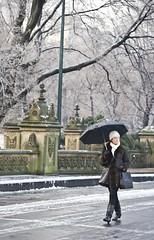 Walk in the Park (Thomas Hawk) Tags: street nyc newyorkcity trees usa snow newyork tree lady umbrella walking gold women gate unitedstates snowy centralpark manhattan unitedstatesofamerica pole covered icy sidewalks