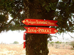 Sign on an oak tree