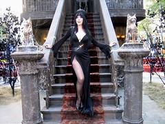 Elvira 06 (The Wrestling Queen) Tags: elvira