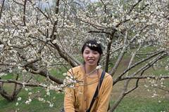 DSC_1200 (chenjn) Tags: d600 nikon 2470mm 妖怪村 柳家梅園 taiwan 信義鄉 梅花