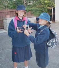 My Kiwi Kids