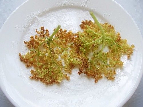 elderflower fritters 2