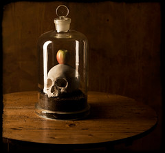 I have no idea what to call this (kevsyd) Tags: apple skull belljar manray artlibre bratanesque flickrtate