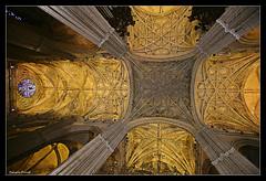 Boveda de la catedral de Sevilla (salvadorfornell) Tags: canon photography photo sevilla foto catedral nacional quedada fotografo fotografía boveda cruzadas canonistas cruzadasgold
