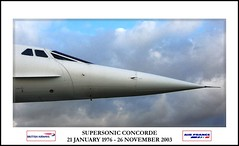 Supersonic Bird (Canonshot Mole) Tags: bird manchester airport aircraft aviation jet icon concorde britishairways transatlantic retirement airfrance supersonic smrgsbord mach2 soundbarrier greatphotographers supercruise mywinners anglofrench diamondclassphotographer flickrdiamond megashot amazingamateur theperfectphotographer