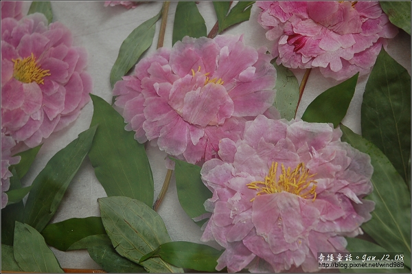DSC_7197乾燥花畫