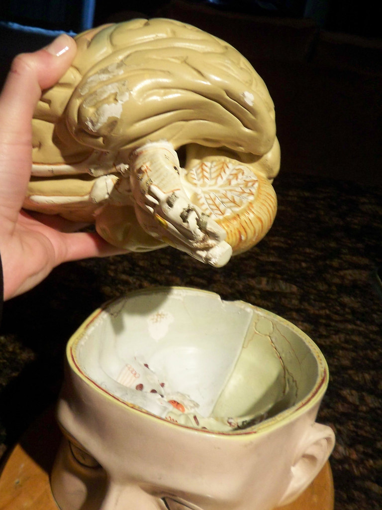 Flea market brain