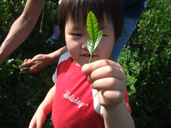 2008_0503_153601 (nmy) Tags: family son kou kiura