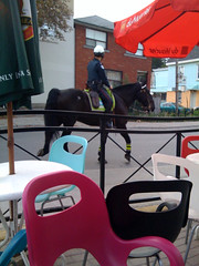 Mounted (frigante) Tags: horse toronto ontario canada geotagged police patio mounted bison parkdale stampede iphone lcbo