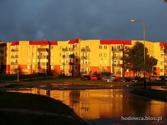 Olechów