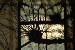 avond (April Sunday) Tags: christmas xmas evening warm avond kerstmis koud schoonhoven