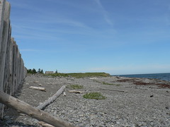 rocky shore (B Practical Pottery) Tags: gaspepeninsula acrosscanada07