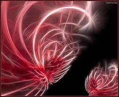 Digital Art santosky N19 (santosky) Tags: art digital photography design arte digitalart paintings decoration editing slideshow healing diseo artedigital cuadros decoracin digitaldesign diseodigital animationart animemusic