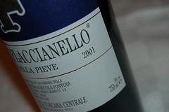 flaccianello fontodi 2001