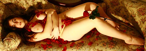 : chaise, soft, rose, public, orchid, flowers, decadence, eve, me, selfportrait