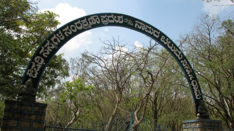 Medicinal Herbs Protection Area and nAmada chilumE Nature Sanctuary