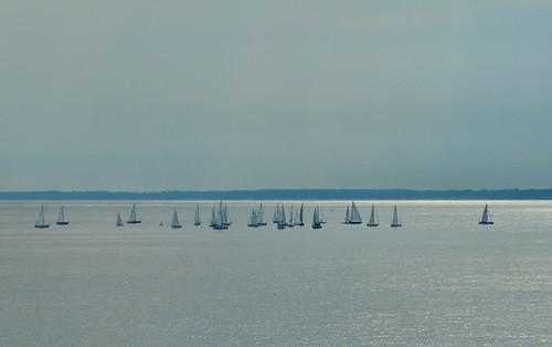 Sale boats on Lake Huron