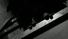 vlcsnap-2011-05-07-19h19m15s23