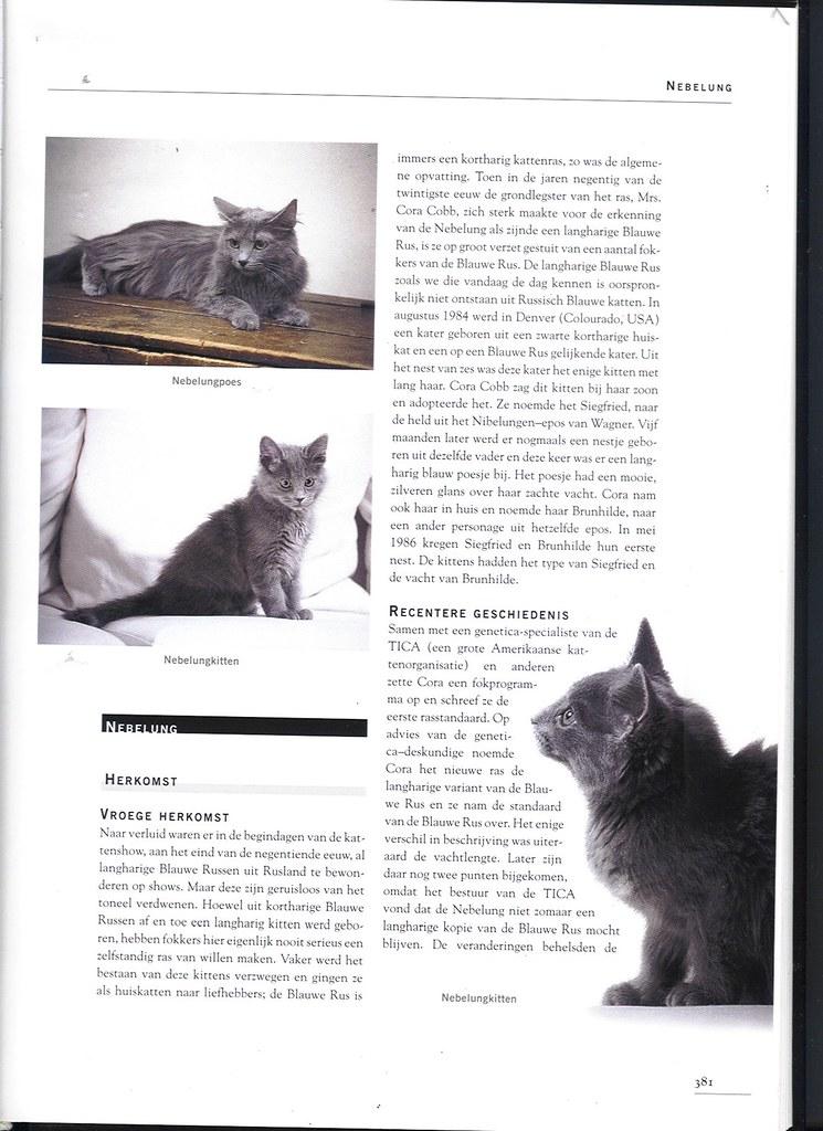 publications - Cat encyclopedia - the Netherlands -first pri 1617383137_4c7b6a6e52_b