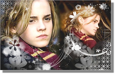 Emma Watson Wallpaper New