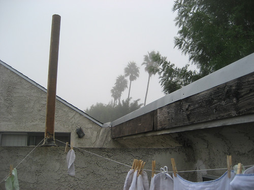 fog-roofview-east