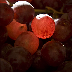 Just sun and red grapes (* Ahmad Kavousian *) Tags: light sun searchthebest explore fruitstand grape 2b granvilleislandmarket explored explore45 nothingelsetoshoot beeninexplorepage beeninflickrexplorepage