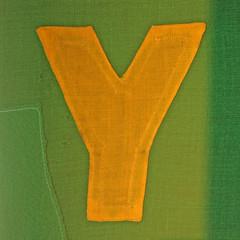 letter Y (Leo Reynolds) Tags: canon eos iso100 y az letter f56 oneletter yyy 127mm 0ev 40d hpexif 0017sec groupiao grouponeletter letteryellow az42 xsquarex xratio11x xxblurbbooklettersxx xxblurbbookxx xleol30x xxazxx