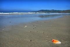 Longbeach With Seashell (chris17nz) Tags: ocean sea newzealand seascape beach landscape fun surf kayak longbeach nz otago dunedin purakanui platinumphoto anawesomeshot
