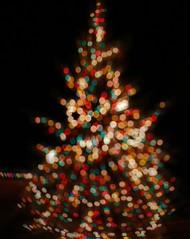 Shine (nionr) Tags: holiday night lensbaby lights blurred christmastree coloredlights