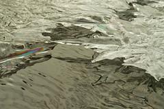 ice shards (explored) (halfbeak) Tags: winter france ice nature water pool flow frozen rainbow stream flickr crystals ripple sharp explore reflect rush canopy shard auvergne glint 43 diffraction hover hauteloire explored halfbeak