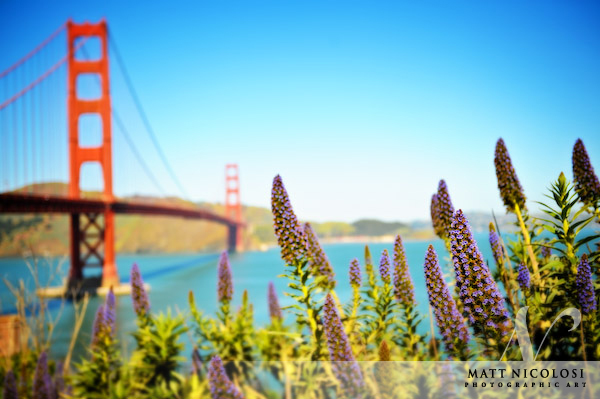 007_San-Francisco_080304