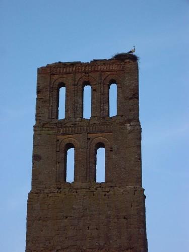 Torre + Cigüeña