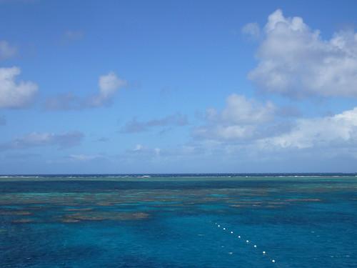 la grande barriera corallina.