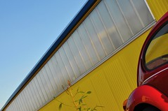 my house, my car , my minimal plant (Heidelknips) Tags: blue red sky plant yellow wall vw beetle minimal käfer