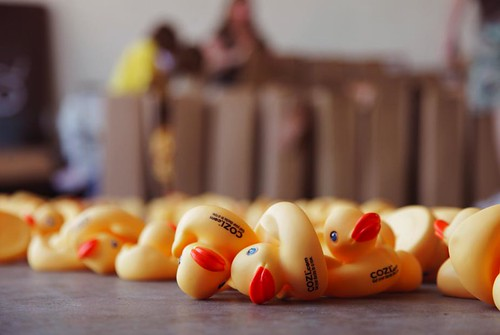 The ducks, being unloaded from boxes